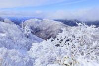 剣山の樹氷と塔の丸 11076026072| 写真素材・ストックフォト・画像・イラスト素材|アマナイメージズ