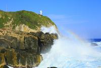 足摺岬の灯台と波に虹