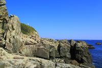 足摺岬の灯台と海