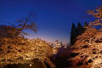 鶴ヶ城(会津若松城) 天守閣と桜のライトアップ