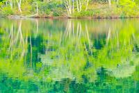 新緑の希望湖と水面