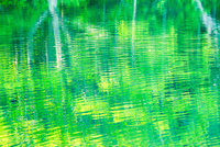 新緑の希望湖と水面 11076026556| 写真素材・ストックフォト・画像・イラスト素材|アマナイメージズ