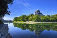 岡山城 11076026971| 写真素材・ストックフォト・画像・イラスト素材|アマナイメージズ