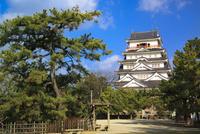 福山城 11076026994| 写真素材・ストックフォト・画像・イラスト素材|アマナイメージズ