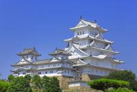 姫路城と大天守