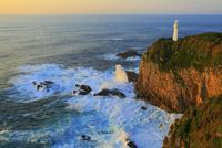 足摺岬の灯台と朝焼け 11076027304| 写真素材・ストックフォト・画像・イラスト素材|アマナイメージズ