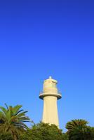 足摺岬灯台 11076027400| 写真素材・ストックフォト・画像・イラスト素材|アマナイメージズ