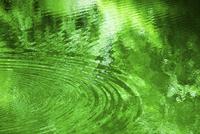 緑の映る水面と波紋 11076027493  写真素材・ストックフォト・画像・イラスト素材 アマナイメージズ