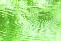 緑の映る水面と波紋 11076027497  写真素材・ストックフォト・画像・イラスト素材 アマナイメージズ