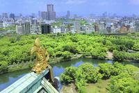 大阪城 天守閣展望台からの眺め