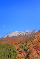 紅葉の鍵掛峠から望む大山 11076028235| 写真素材・ストックフォト・画像・イラスト素材|アマナイメージズ