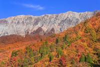紅葉の鍵掛峠から望む大山