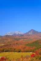 紅葉の鬼女台から望む烏ヶ山と大山 11076028241| 写真素材・ストックフォト・画像・イラスト素材|アマナイメージズ