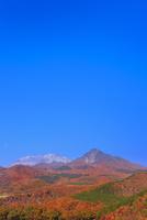 紅葉の鬼女台から望む烏ヶ山と大山 11076028244| 写真素材・ストックフォト・画像・イラスト素材|アマナイメージズ