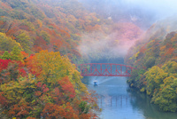 帝釈峡 紅葉の神龍湖を行く遊覧船 11076028245| 写真素材・ストックフォト・画像・イラスト素材|アマナイメージズ