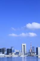 都心のビル群と東京タワー