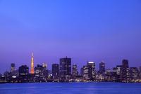 都心のビル群と東京タワーのライトアップ