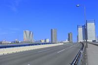 晴海大橋の道路とビル群に東京タワー