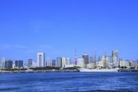 ビル群と東京タワーに日本丸