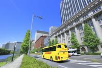 丸の内ビル街とハトバス