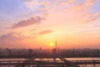 スカイツリー 荒川と首都高速道路に夕日