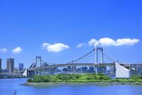 レインボーブリッジと東京タワーに新緑