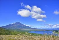 明神山山頂より富士山とススキの原に山中湖