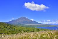 明神山山頂より富士山とススキの原に山中湖 11076028620| 写真素材・ストックフォト・画像・イラスト素材|アマナイメージズ