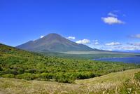 明神山山頂より富士山とススキの原に山中湖 11076028621| 写真素材・ストックフォト・画像・イラスト素材|アマナイメージズ