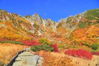 紅葉の千畳敷カールより中央アルプス・宝剣岳を望む 11076028781| 写真素材・ストックフォト・画像・イラスト素材|アマナイメージズ