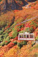 中央アルプス・紅葉と駒ヶ岳ロープウェイ