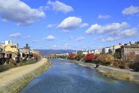 秋の京都 鴨川