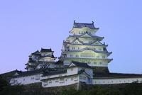 新緑の姫路城 ライトアップ