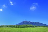 新緑の草原と岩手山