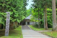 新緑の中尊寺金色堂 11076029194  写真素材・ストックフォト・画像・イラスト素材 アマナイメージズ