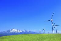 仁賀保高原 鳥海山と新緑の草原に風車