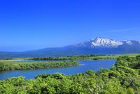 仁賀保高原 新緑と鳥海山