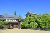 上田城跡公園 東虎口櫓門と北櫓の新緑