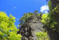 角間渓谷の新緑