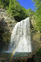 新緑の乗鞍高原 善五郎の滝と虹