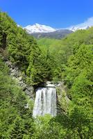 新緑の乗鞍高原 善五郎の滝と乗鞍岳