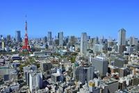 国際貿易センタービルより東京タワーと六本木ヒルズに東京の街並み展望 11076029742| 写真素材・ストックフォト・画像・イラスト素材|アマナイメージズ