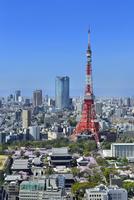 国際貿易センタービルより東京タワーと六本木ヒルズに東京の街並み展望