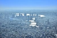 スカイツリー天望回廊より光る隅田川に東京の街並みと東京湾