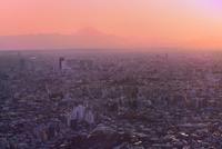 サンシャイン60展望室より夕焼けの富士山と東京の街並み