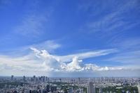 六本木ヒルズより東京の街並みと入道雲 新宿方面望む