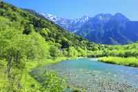 新緑の上高地,梓川と穂高連峰