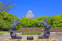 新緑の姫路城 天守閣と鯱瓦