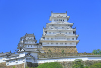新緑の姫路城 天守閣