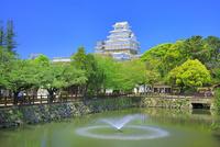 新緑の姫路城 天守閣と噴水